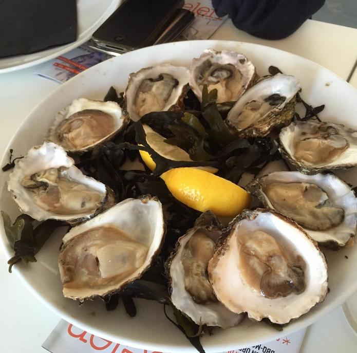 Zeeuwse Lunch door ZLM Verzekeringen
