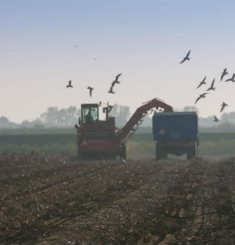 Intrigerende TV-serie over de kunst van het boeren